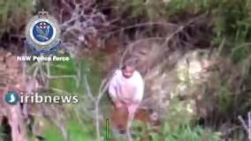 لحظه پیدا شدن کودک ۳ ساله در جنگلهای استرالیا بعد از ۴ روز جستجو